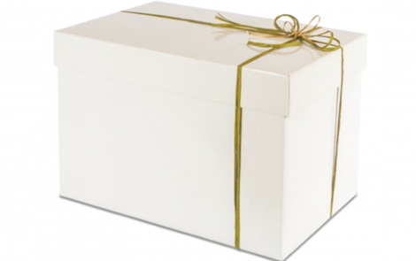 Scatole-Baule-REG11-white-christmas