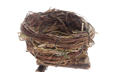 Nido Uccellini Decorazione Pasqua Rosati Carta